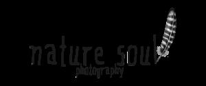 naturesoul_logo_trans